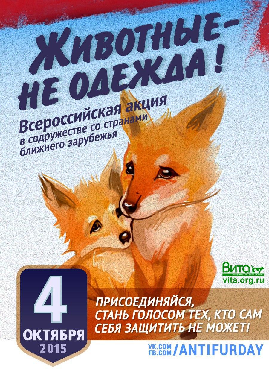 Постер защита животных